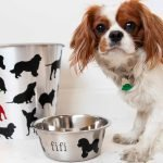 These dog crafts are so adorable! I would love to DIY a personalized food dish for my pup. #amakersstudio #imperfectartisan #dogmom #diycrafts #stencils #doglover